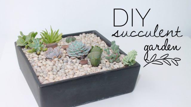 DIY Tutorial | How To Make A Succulent Garden
