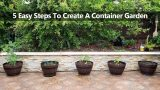 5 Steps To Create A Successful Container Vegetable Garden