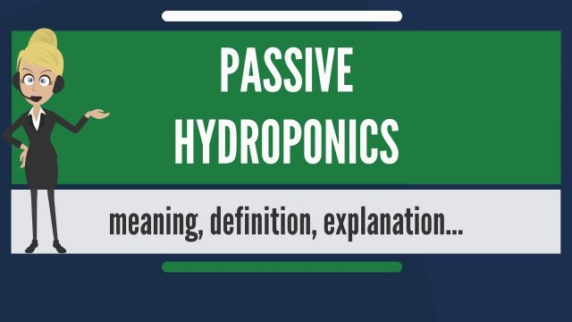 What is PASSIVE HYDROPONICS? What does PASSIVE HYDROPONICS mean? PASSIVE HYDROPONICS meaning