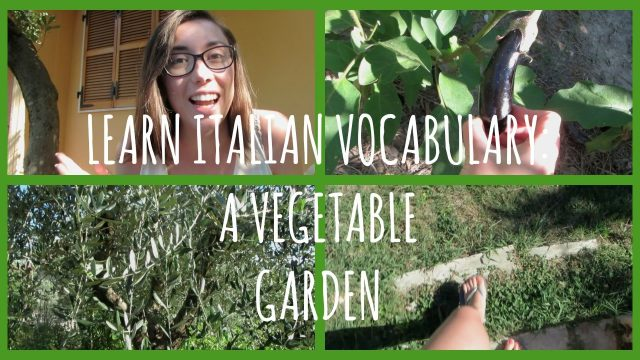 Italian vocabulary: exploring a vegetable garden – Learn Italian with Lucrezia