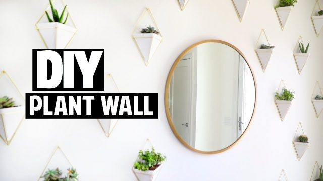 DIY Succulent Plant Wall / Room Decor! | Ashley Nichole