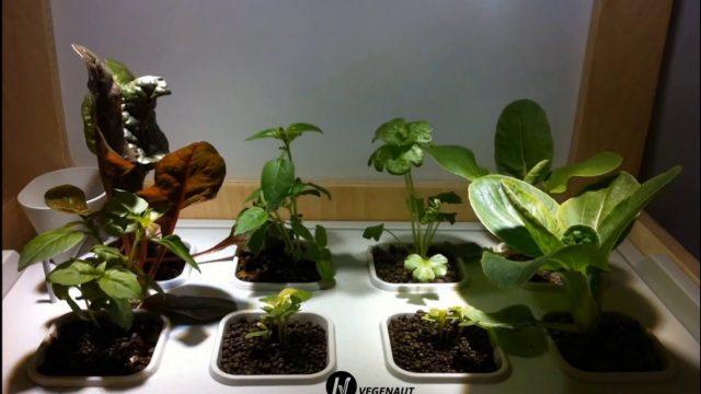 Greentech Organic Hydroponics Systems Mfg