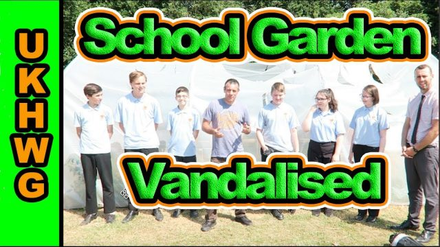 Neatherd School Garden Wrecked By Vandals