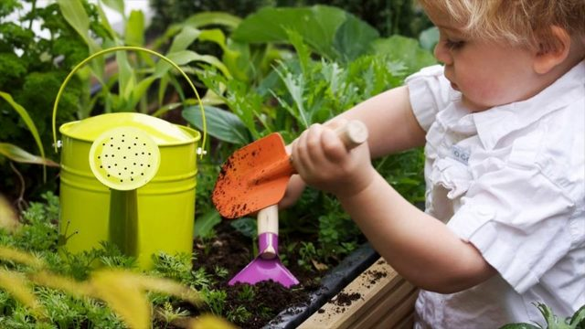 What Are The Kids Gardening Tools – How To Keep Little Gardeners On The Right Path