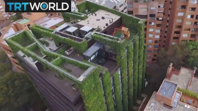 Colombia Gardens: Largest vertical garden acts as giant purifier