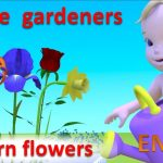 Learn flowers for kids. Little gardeners How plants grow from seeds cartoon for children