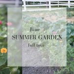 June Garden Tour| SUMMER VEGETABLE GARDEN
