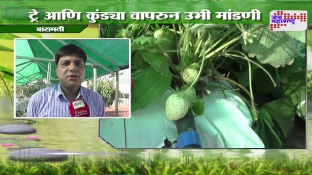 AGRO HERO: VERTICLE FARMING