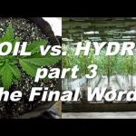 Soil vs Hydro – What's the Best Way to Grow Weed pt3 The FINAL Word? | by Cannabis Frontier