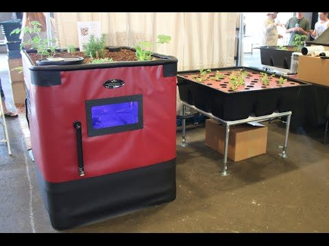 Endless fish & vegetables with aquaponics : Prepper Fest Arizona