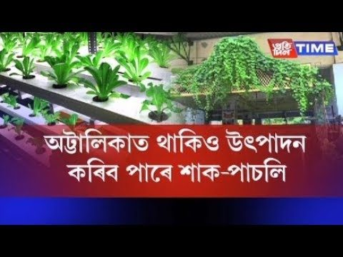 Hi-tech Hydroponic Aeroponics Farming now in Guwahati