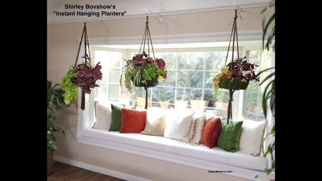 Instant Indoor Hanging Planter-Lightweight