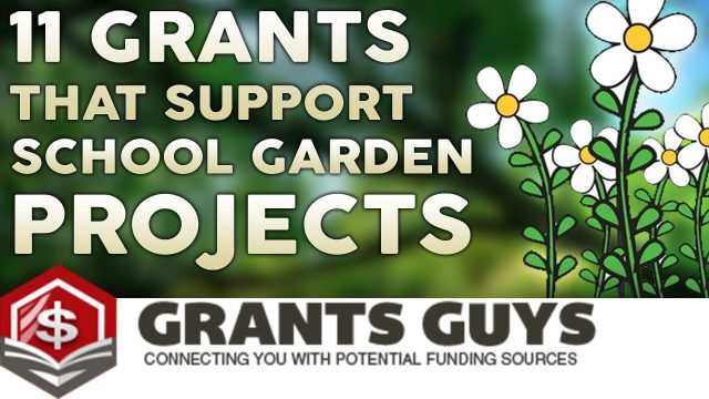 11 Grants That Support  School Garden Projects