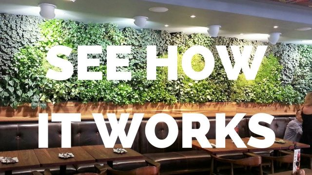 Greenwalls by Vicinity – How it works