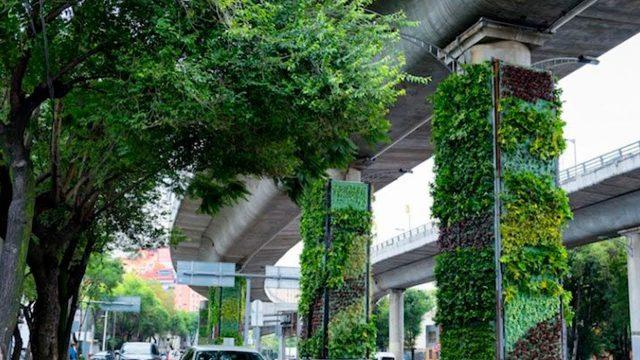 Jardines verticales, alternativas para el ambiente y el desarrollo/ En Entrevista – Conacyt