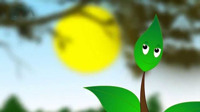 Plant Parts Song │ Cartoon Animation Song For Kids