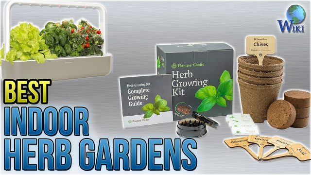 10 Best Indoor Herb Gardens 2018