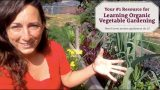 Your #1 Resource for Learning Organic Vegetable Gardening
