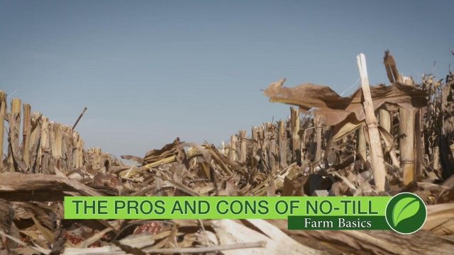 Farm Basics #1029 The Pros And Cons Of No-Till (Air Date 12-24-17)