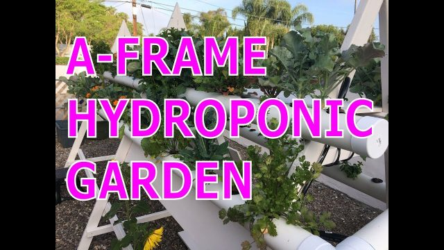 DIY Best Vertical A-Frame Hydroponic Garden Farm Build