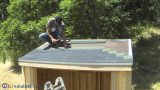 How To Build A Lean To Shed – Part 7 – Roofing Install