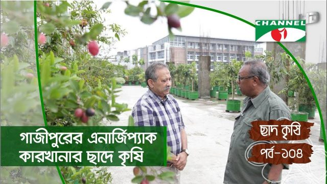 Rooftop farming | EPISODE 104 | HD | Shykh Seraj | Channel i | Roof Gardening | ছাদকৃষি |