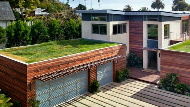 Green Roofs for Healthy Cities | Spectacular Sustainable Homes