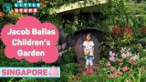 Fun Thing To Do With Kids In Singapore – Jacob Ballas Children's Garden!