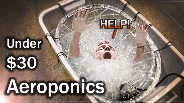 Easy DIY D.W.C. Aeroponic Hybrid Hydroponic Setup under $30