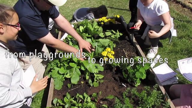 The School Garden Project – A short film