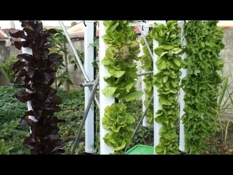 2018 Vertical Farming, Hydroponics & Aquaponics Systems (683)