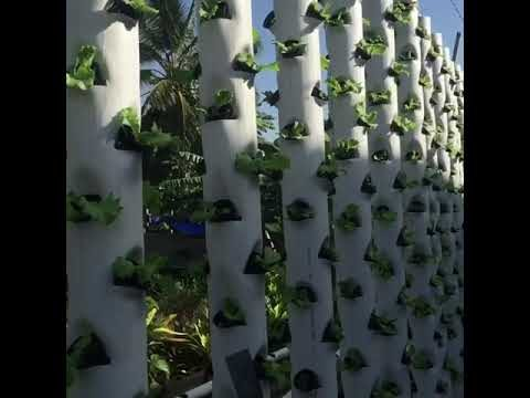 Vertical towers hydroponics Trinidad