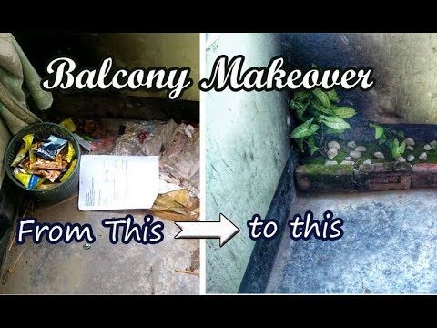 Indoor gardening Ideas : Decorating my hostel room's dirty balcony with plants