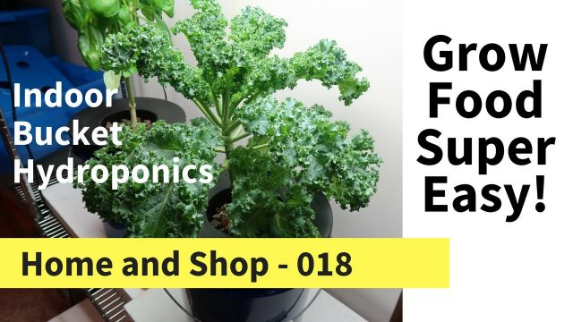 Homemade Hydroponic Growing System for Beginners