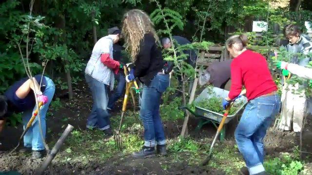 Organic Master Gardening Course