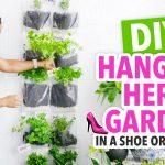 DIY Indoor Herb Garden in a Shoe Organizer! – HGTV Handmade