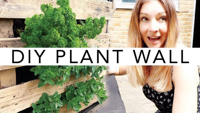 DIY Vertical Wall Garden | BEAUTIFUL PLANT WALL FOR YOUR BALCONY