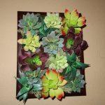 Dollar Tree DIY – Pottery Barn Inspired Succulent Wall Decor