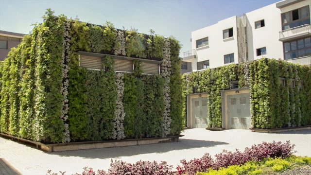 Tag Sultan Generator Room Green Walls – Project of the Week 6/4/18