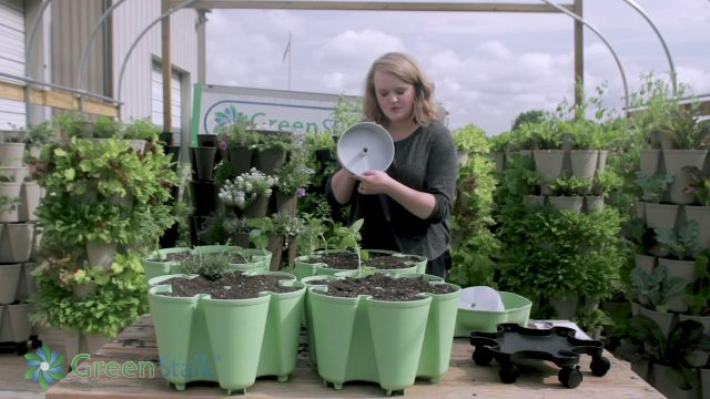 How to Plant a GreenStalk Vertical Planter | Step by Step