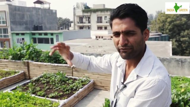 India Green Hi-Tech Agri, How To Setup Rooftop Garden (Step By Step Instructions)
