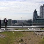 Green Roofs in the City