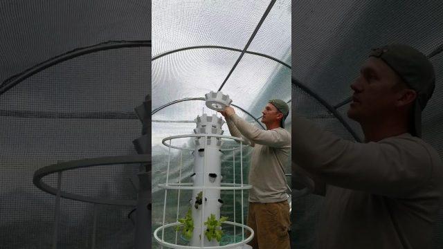 Installing Juice Plus Micro Greens Extension