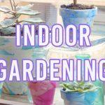 4 Brilliant Indoor Gardening Ideas