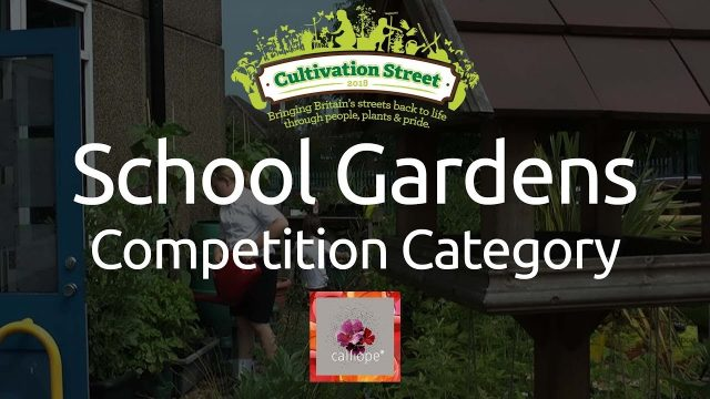 Cultivation Street: School Gardens