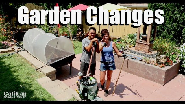 Changes are Coming to the Garden // Living Wall #1