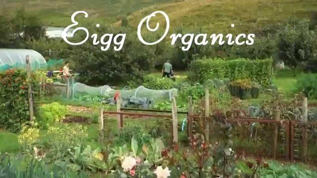Eigg Organics Gardening Courses (HD)