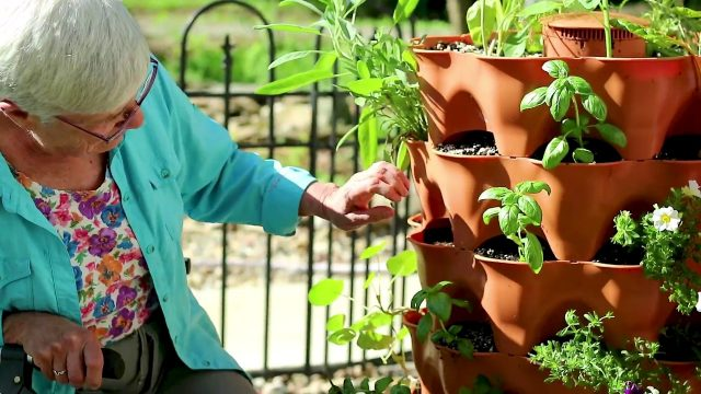 Eleanor on growing organically in a Garden Tower 2 vertical container garden system