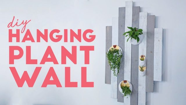 DIY THIS MODERN RUSTIC PLANT WALL