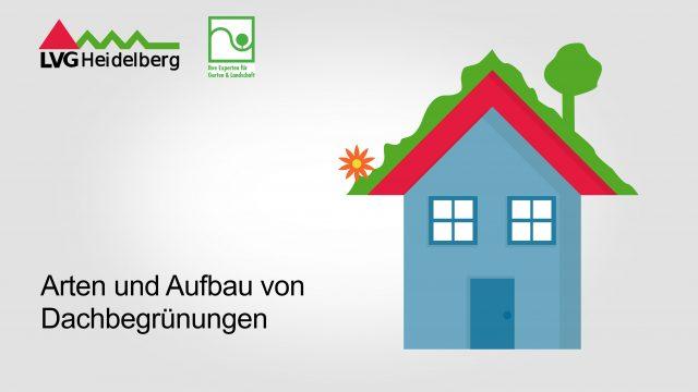 Aufbau und Arten von Dachbegrünungen